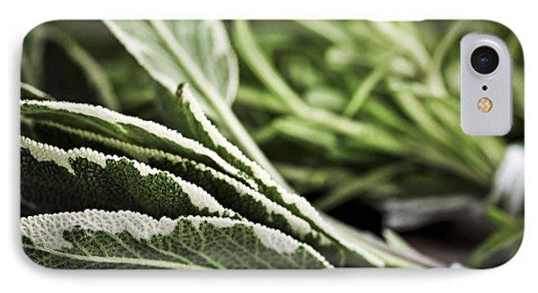 Herbs IPhone Case by Elena Elisseeva