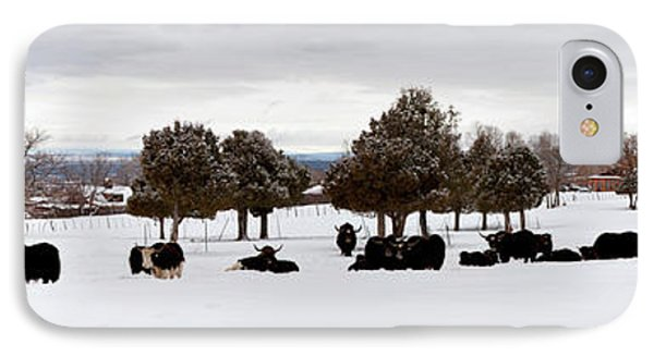 Herd Of Yaks Bos Grunniens On Snow IPhone Case by Panoramic Images