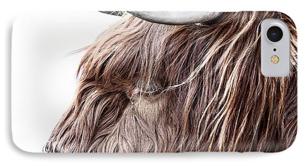 Highland Cow Color IPhone Case by John Farnan