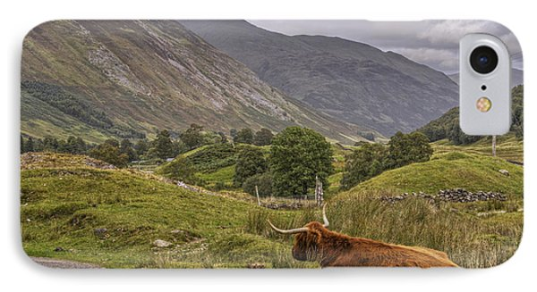 Highland Cow In Scotland Phone Case by Jason Politte