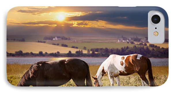 Horses Grazing At Sunset IPhone Case by Elena Elisseeva