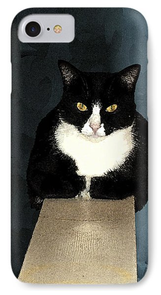House Cat Phone Case by Don Allen
