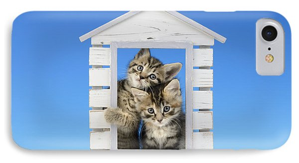 House Of Kittens Ck528 IPhone Case by Greg Cuddiford