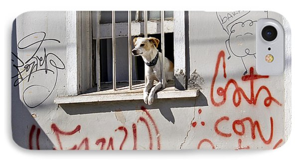How Much Is That Doggie In The Window? Phone Case by Kurt Van Wagner