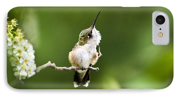 Hummingbird Flexibility Phone Case by Christina Rollo