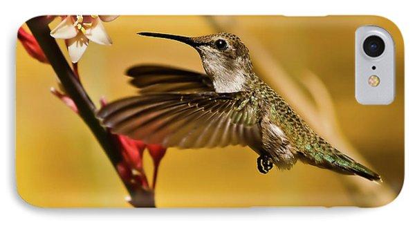 Hummingbird Phone Case by Robert Bales