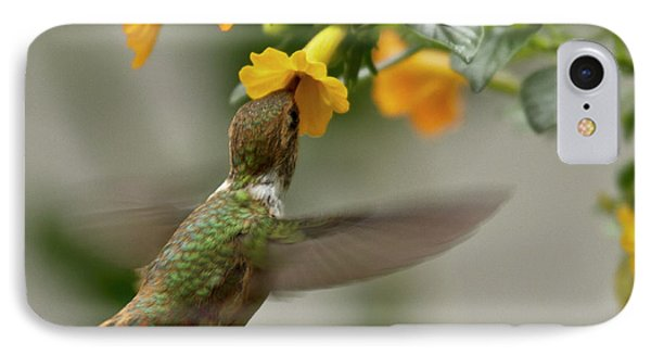 Hummingbird Sips Nectar IPhone 7 Case by Heiko Koehrer-Wagner