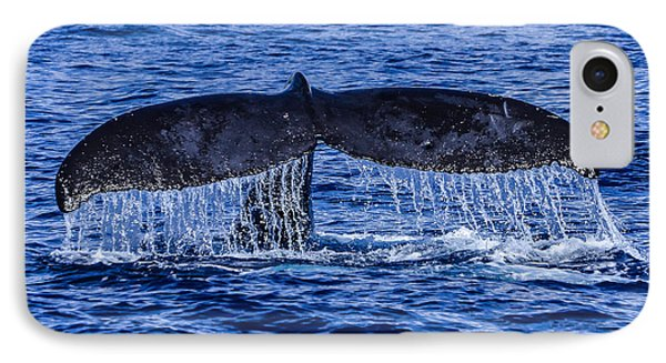 Humpback Whale Tail Fluke During Deep Dive Phone Case by Puget  Exposure