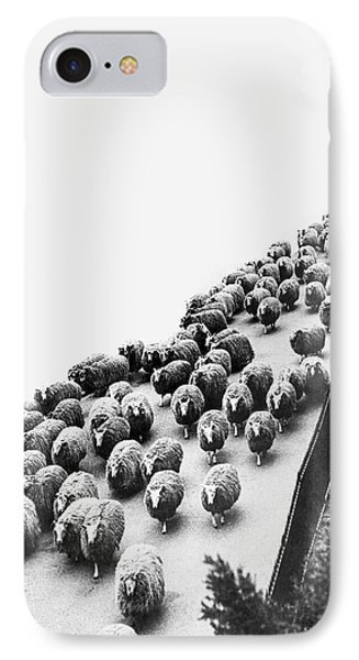 Hyde Park Sheep Flock IPhone 7 Case by Underwood Archives