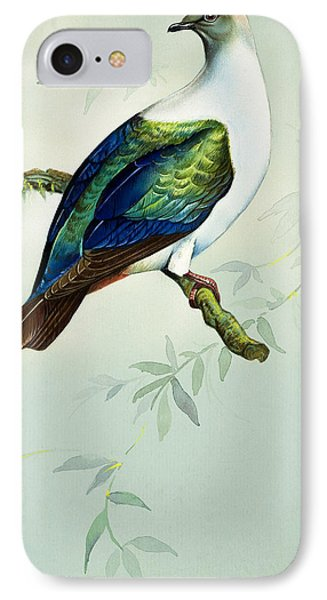 Imperial Fruit Pigeon IPhone Case by Bert Illoss