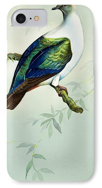 Imperial Fruit Pigeon IPhone 7 Case by Bert Illoss