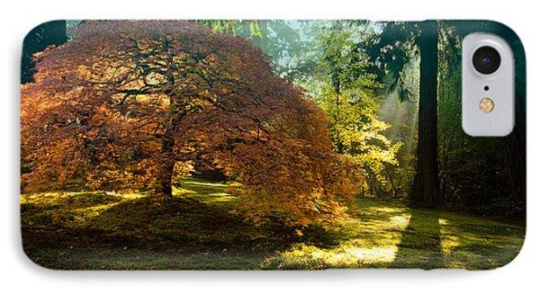 In The Gentle Autumn Light Phone Case by Don Schwartz