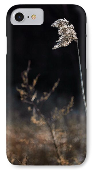 In The Wind Phone Case by JC Findley