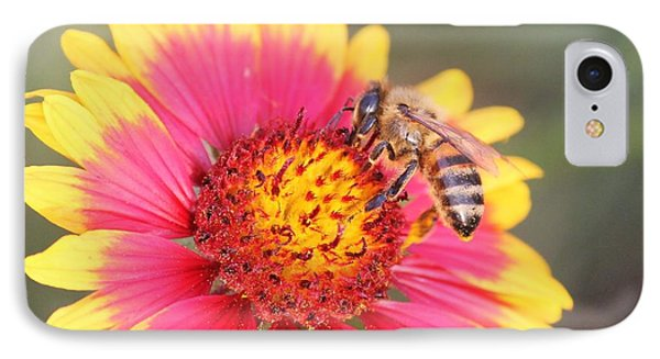 Indian Blanket Aka Firewheel And Bee Phone Case by Lorri Crossno
