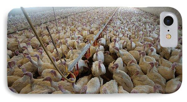 Intensive Turkey Farm IPhone 7 Case by Peter Menzel