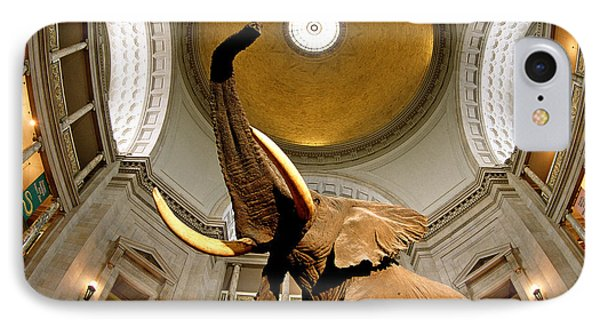 Interiors Of A Museum, National Museum IPhone Case by Panoramic Images