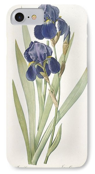 Iris Germanica Bearded Iris IPhone 7 Case by Pierre Joseph Redoute