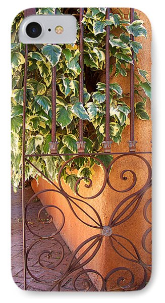 Ivy And Old Iron Gate Phone Case by Ben and Raisa Gertsberg