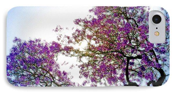 Jacaranda Glory IPhone Case by Gwyn Newcombe