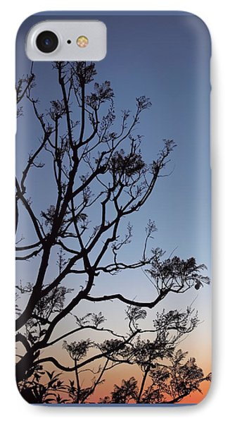 Jacaranda Sunset IPhone Case by Rona Black