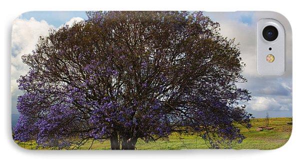 Jacaranda Tree IPhone Case by Mike  Dawson