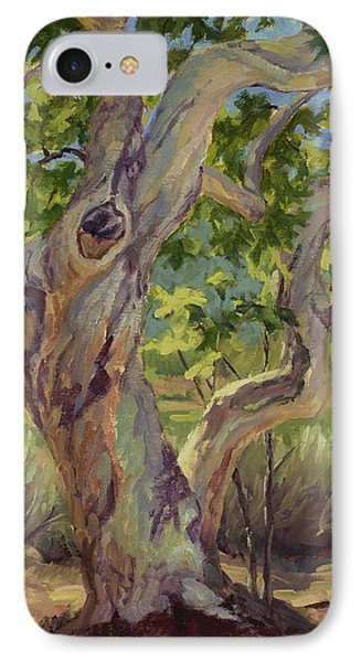 Spring Sycamore IPhone Case by Jane Thorpe