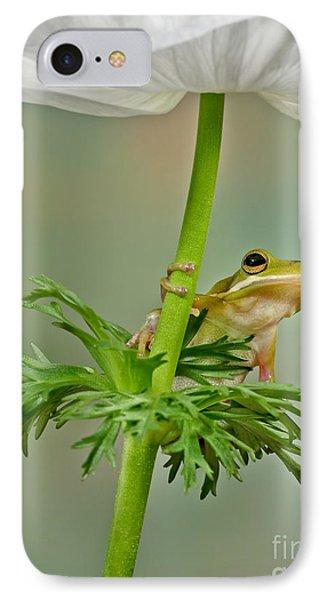 Kermits Canopy Phone Case by Susan Candelario