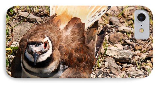Killdeer On Its Nest IPhone Case by Chris Flees