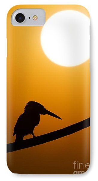 Kingfisher Sunset Silhouette IPhone 7 Case by Tim Gainey