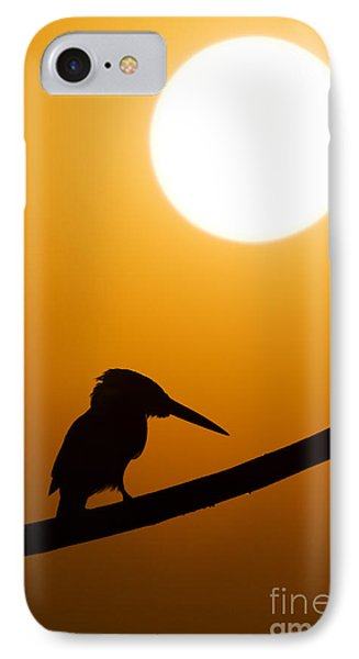 Kingfisher Sunset Silhouette IPhone Case by Tim Gainey