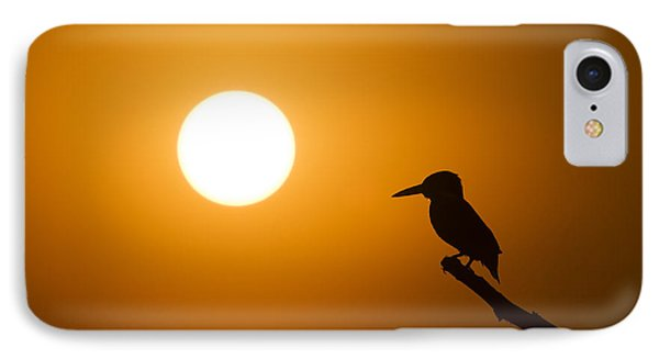 Kingfisher Sunset IPhone 7 Case by Tim Gainey