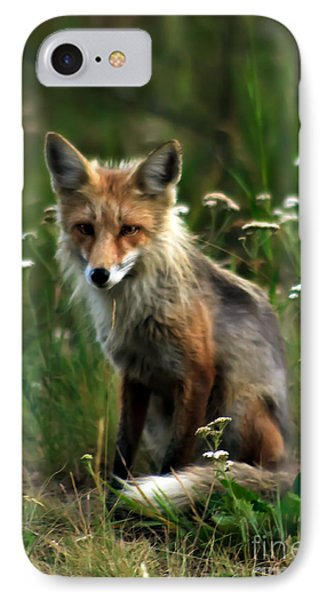 Kit Red Fox Phone Case by Robert Bales