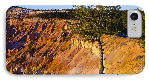 Know Your Roots - Bryce Canyon Phone Case by Jon Berghoff