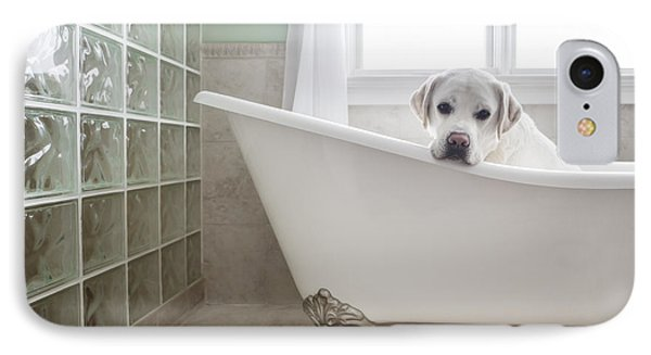 Lab In A Bathtub IPhone Case by Diane Diederich