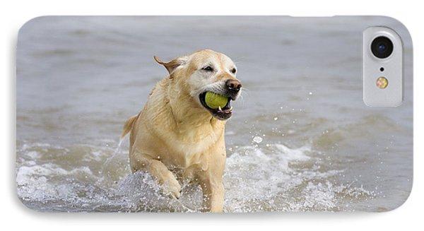 Labrador-mix Retrieving Ball Phone Case by Geoff du Feu