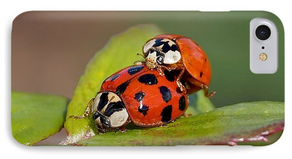 Ladybird Coupling IPhone Case by Rona Black