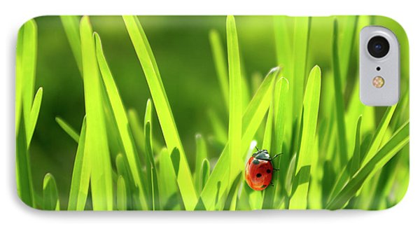Ladybug In Grass Phone Case by Carlos Caetano