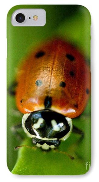 Ladybug On Green IPhone Case by Iris Richardson