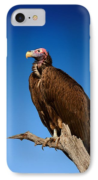 Lappetfaced Vulture Against Blue Sky IPhone 7 Case by Johan Swanepoel