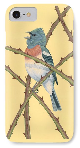 Lazuli Bunting IPhone Case by Nathan Marcy