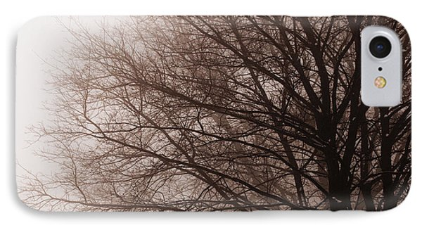 Leafless Tree In Fog IPhone Case by Elena Elisseeva