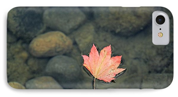 Leaves Are Falling IPhone Case by Rachel Cash