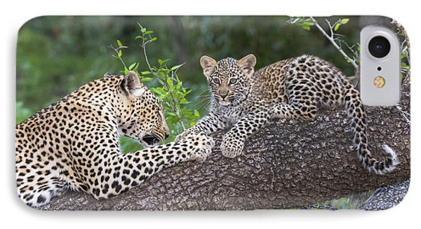Leopard And Cub Masai Mara Kenya IPhone Case by Andrew Schoeman