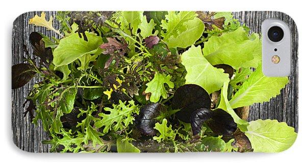 Lettuce Seedlings IPhone Case by Elena Elisseeva