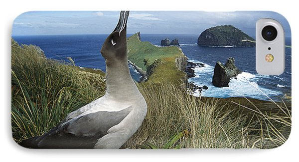 Light-mantled Albatross Sky-pointing Phone Case by Tui De Roy