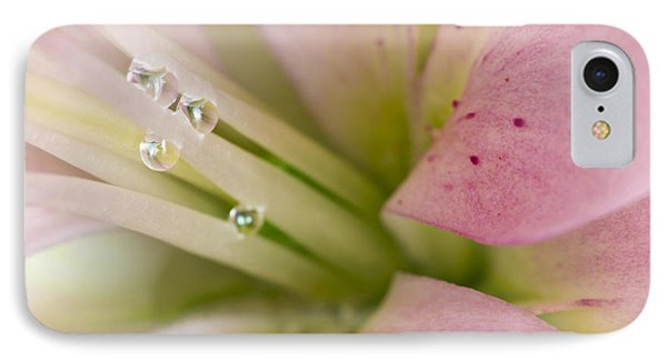 Lily And Raindrops Phone Case by Melanie Viola