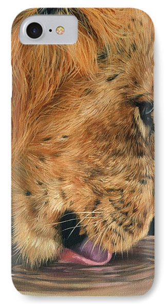 Lion Drinking Phone Case by David Stribbling
