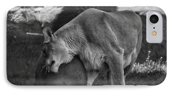 Lion Hugs In Black And White Phone Case by Thomas Woolworth