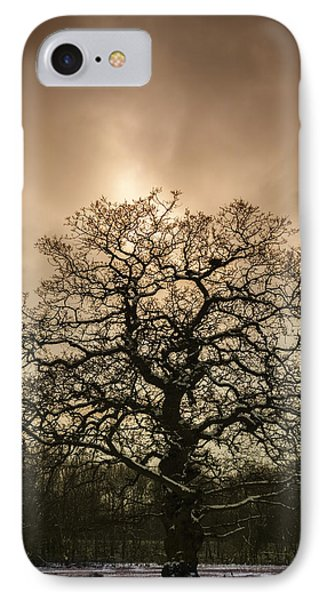 Lone Tree IPhone Case by Amanda Elwell