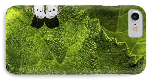 Lonely On A Leaf Phone Case by Tim Buisman